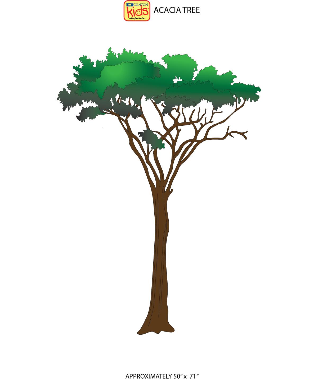 14 Cc Acacia Tree