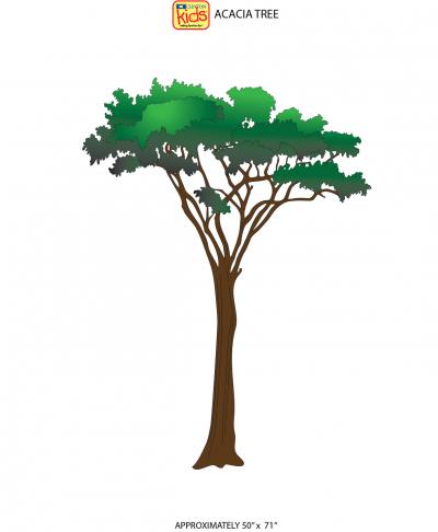 14 CC Acacia Tree new