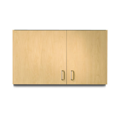 Wall Cabinet with 2 Doors