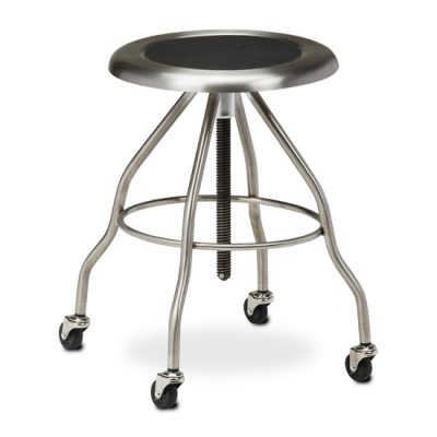 *Stainless Steel Stool with Casters