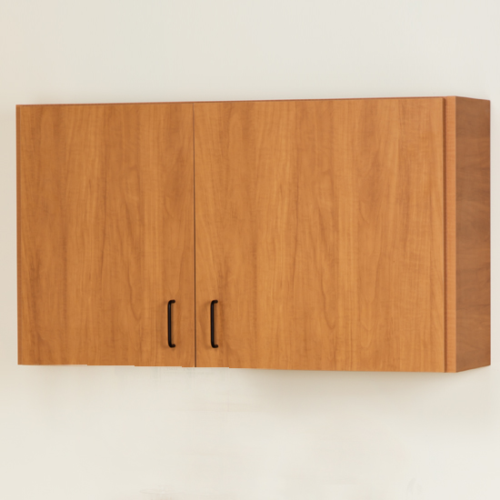 Wall Cabinet With 2 Doors17 Quick Cabinets Pediatric Equipment Products Clinton
