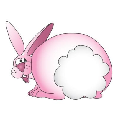 Cottontail Graphic