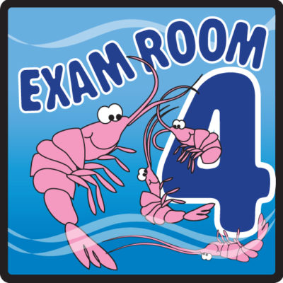Ocean Series Exam Room 4 Sign