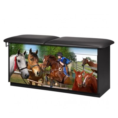 Equestrian Treatment Table